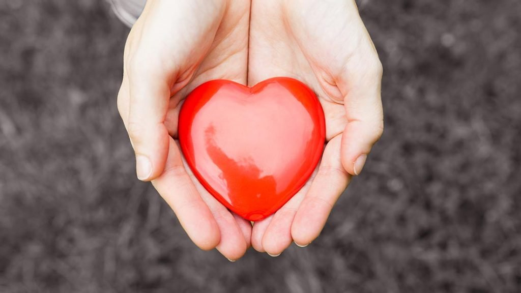 hands_hold_heart_red