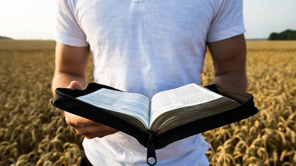 man_christian_evangelize_corn_nature_bible_world